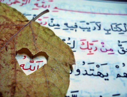 Allah'ı (C.C.) Anmak – 1